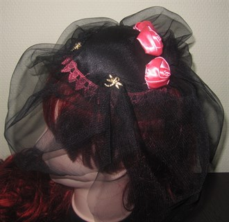 Вуалетка с розовыми розами и стрекозами